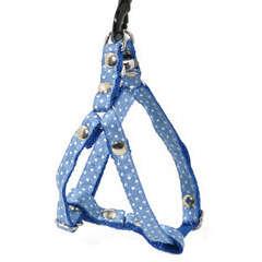 Harnais galon motif pois sur sangle nylon : Tour de cou 17-27 cm bleu