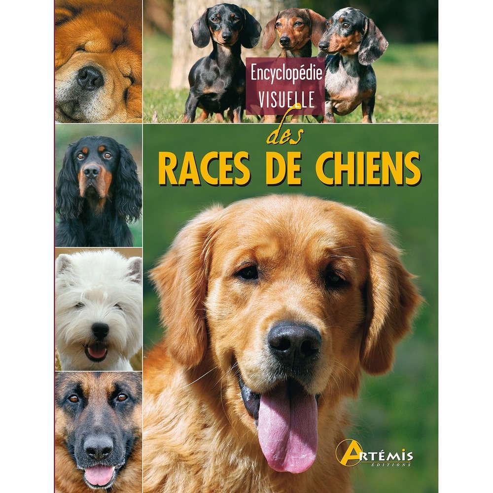 Adopter Un Chiot - 10 astuces à connaître - Education du chien - Pourquoi et comment ?