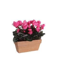 Cyclamen artificiel rose (H33cm), en jardinière L.29 x l.13 cm