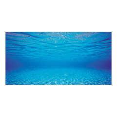 Poster pour aquarium : taille S Longueur de 60 cm et hauteur de 30 cm