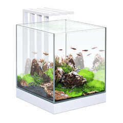 Aquarium Nano Nexus, blanc - 25 litres