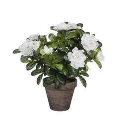 Plante artificielle : Pot azaléa blanc H.27 cm