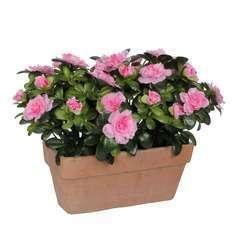 Plante artificielle : Jardinière azaléa rose L.29 x H.27 cm