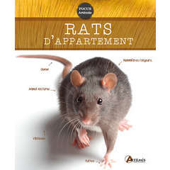 Livre animalerie: Rats d'appartements