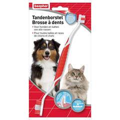 Brosse à dents pour toutes tailles et races de chiens