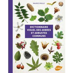Dictionnaire visuel: Arbres et arbustes
