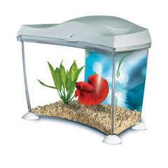 Aquarium Betta Kit poisson d'eau douce, blanc - 6,9 litres