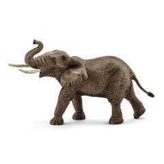 Éléphant d'Afrique mâle