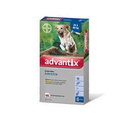 Pipette antiparasitaire grand chien advantix x6