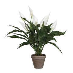 Spathiphyllum artificiel blanc Ø 40 x H. 50 cm, en pot Ø 11,5 cm