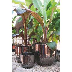 Pot Vase Rebord coloris Métal D35 H33 cm