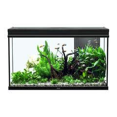 Aquarium Elégance Expert poisson d'eau douce, noir - 248 litres