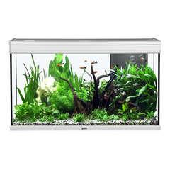 Aquarium Elégance Expert poisson d'eau douce, inox - 248 litres