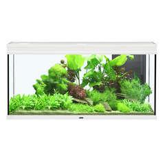 Aquarium Elégance Expert poisson d'eau douce, blanc - 293 litres