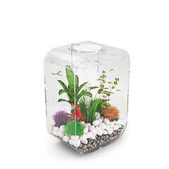 Aquarium Biorb LIFE, transparent - 15 litres