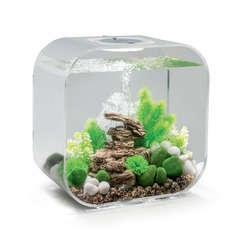 Aquarium Biorb LIFE, transparent - 30 litres