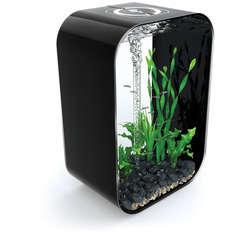Aquarium Biorb LIFE, noir - 60 litres