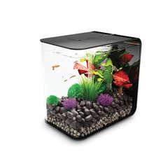 Aquarium Biorb Flow, noir - 30 litres
