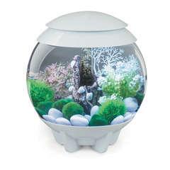 Aquarium Biorb Halo, blanc - 15 litres