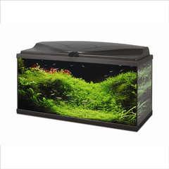 Aquarium Ciano, noir - 78 litres