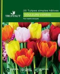 Bulbes de tulipes hâtives mix - x25