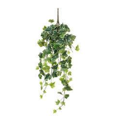 Lierre artificiel à suspendre, vert panaché L.71cm
