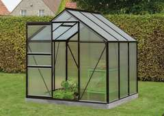 Serre Own Grow Daisy (vitre polycarbonate), noir (LDD) - 3,8m²