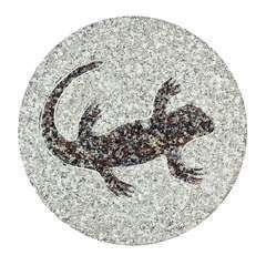 Pas de jardin fossile, en granit Ø 30 cm - Lézard