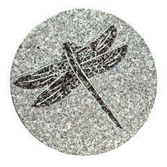 Pas de jardin fossile, en granit Ø 30 cm - Libellule