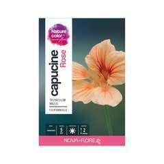 Capucine rose : boite
