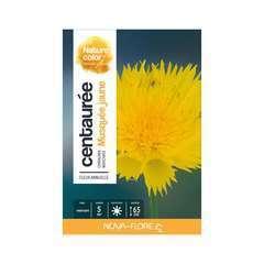 centaurée musquée jaune : boite