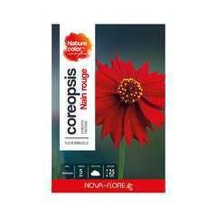 coreopsis rouge foncé: boite