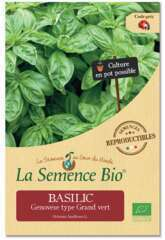 Graines potagères basilic Genovese type Grand'vert Bio en sachet