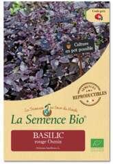 Graines potagères basilic rouge Osmin Bio en sachet