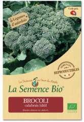 Graines potagères brocolis calabrais hâtif Bio 0,5g