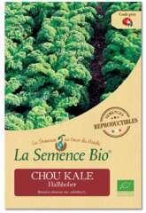 Graines potagères chou Kale Halbhoher Bio en sachet