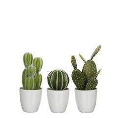 Cactus artificiel, en pot Ø 9,5 x H. 28 cm