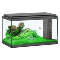 Aquarium Aquatlantis poisson d'eau douce, noir - 61 litres