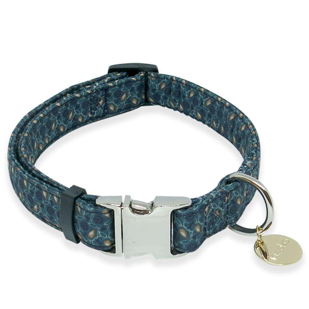 collier pour chien taille s