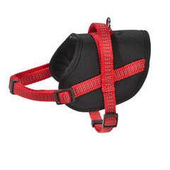 Harnais Easy de la collection Safe, couleur rouge et taille XXS