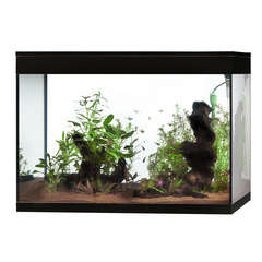 Aquarium Askoll Pure Led : noir 130L