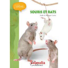 Guide petits mammifères : Souris et rats