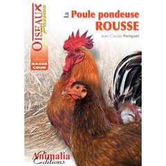 Guides basse-cour : La poule pondeuse rousse
