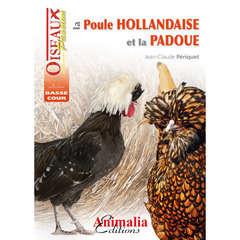 Guides basse-cour : La poule hollandaise et padoue
