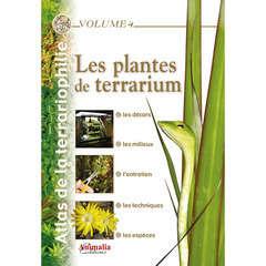 Atlas terrariophilie : Les plantes de terrarium