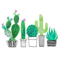 Serviettes de table x20, 33x33cm - Cactus