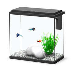 Aquarium Sarawak, noir - 18 litres