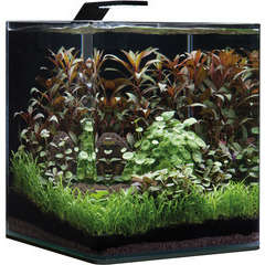 Aquarium Nano Cube Basic, transparent - 30 litres
