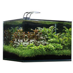 Aquarium Nano Scaperstank Basic, transparent - 35 litres