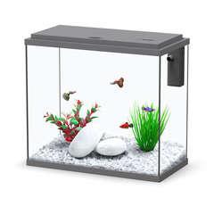 Aquarium Sarawak, gris - 25 litres